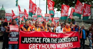 greyhound_workers