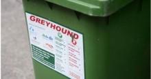 Greyhound-bin-767x407