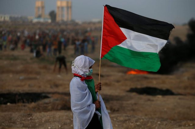 Palestine_demo_with_flag